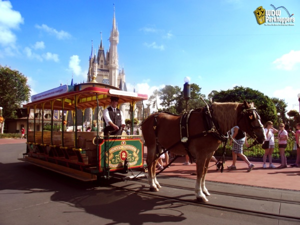 Horse and Carriage at the Magic Kingdom in Walt Disney World Resort