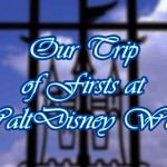 our-trip-of-firsts-at-walt-disney-world