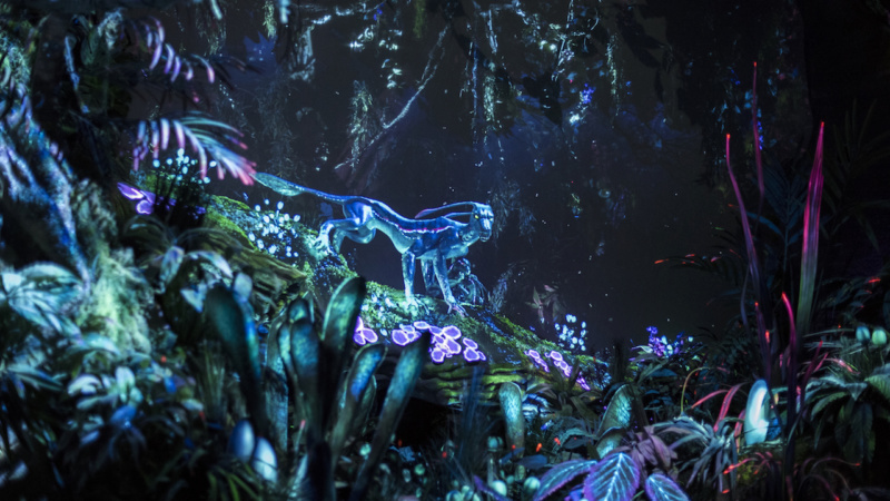 Pandora – The World of Avatar Opens Fastpass+ And Special Extra Magic Hours